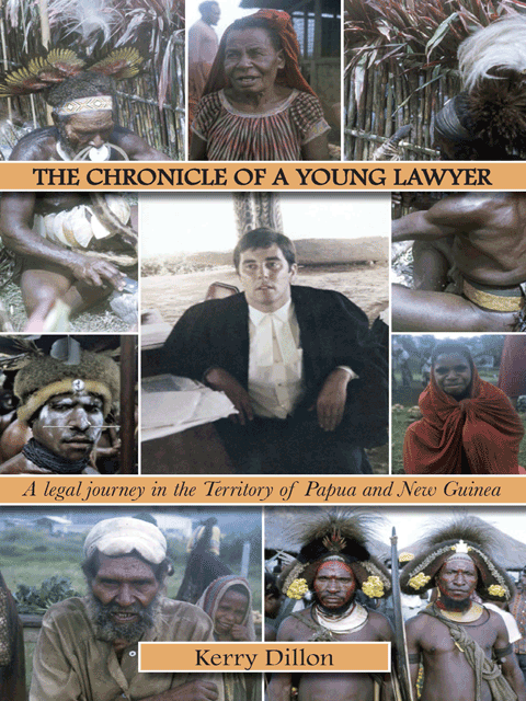 The Chronicle of a Young Lawyer